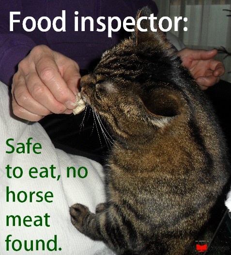 Safe to eat, no horse meat!