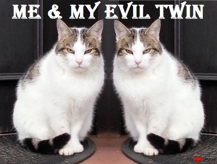 My evil twin…booo!
