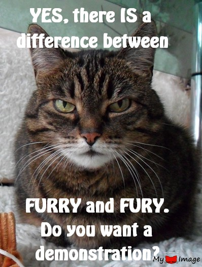 A difference between FURRY and FURY