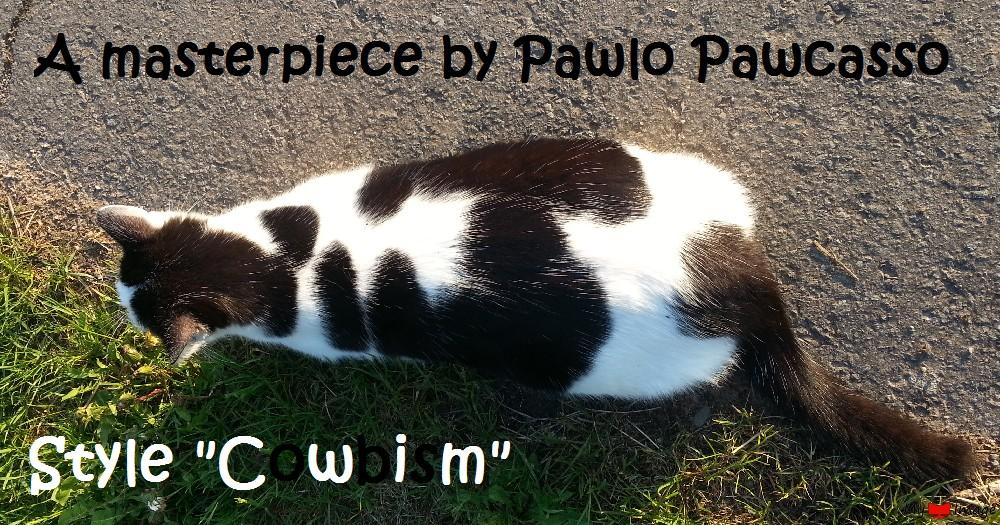 Cubism feline style